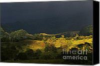 Rural Scenes Photo Canvas Prints - Sunspot after the storm Canvas Print by Heiko Koehrer-Wagner