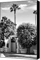Spanish Style Canvas Prints - SUNTAN LANE Palm Springs Canvas Print by William Dey