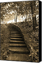 Staircase Canvas Prints - Surreal Fantasy Staircase Nature Woodlands Canvas Print by Kathy Fornal