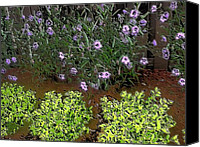 Misunderstanding Canvas Prints - Survivors Garden Canvas Print by Fania Simon