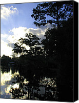 Don L Williams Canvas Prints - Swamp Dawn Canvas Print by Don L Williams