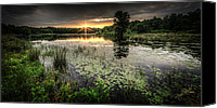 Swamp Canvas Prints - Swamp Sunrise Canvas Print by Everet Regal
