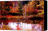Fall Scenes Canvas Prints - Swamped Birch Canvas Print by Emily Stauring