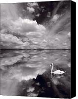 Blue Swan Canvas Prints - Swan Lake Explorations B W Canvas Print by Steve Gadomski