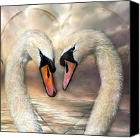 Greeting Card Canvas Prints - Swan Love Canvas Print by Carol Cavalaris