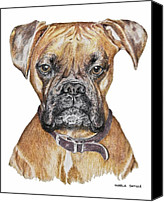 Boxer Pastels Canvas Prints - Sweet Boxer Canvas Print by Marla Saville