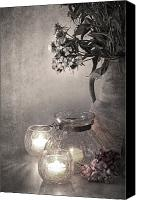 Botanic Canvas Prints - Sweet williams sepia Canvas Print by Jane Rix