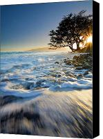 Lahaina Canvas Prints - Swept out to Sea Canvas Print by Mike  Dawson