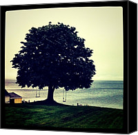 Relaxing Canvas Prints - Swings By The Sea Canvas Print by Luke Kingma