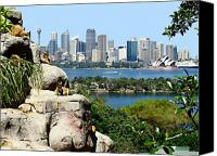 Sydney Skyline Canvas Prints - Sydney Harbor From The Zoo Canvas Print by Ellen Henneke
