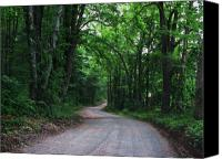 Scenic Roads Canvas Prints - Take Me Home Country Road Canvas Print by Joyce L Kimble