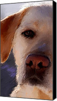Hound Canvas Prints - Take Me Canvas Print by Robert Smith