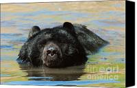 North American Wildlife Canvas Prints - Taking A Dip Canvas Print by Sandra Bronstein