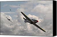 Raf Canvas Prints - Tally Ho Canvas Print by Pat Speirs