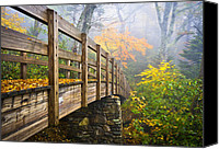 Parkway Canvas Prints - Tanawha Trail Foot Bridge - Rough Ridge Autumn Foliage NC Canvas Print by Dave Allen