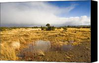 Puddle Canvas Prints - Tasmanian Storm  Canvas Print by Mike  Dawson