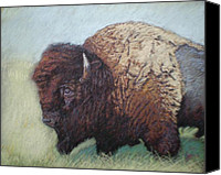 Bison Pastels Canvas Prints - Tatanka Canvas Print by Suzie Majikol-Maier
