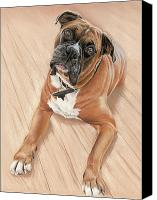 Boxer Pastels Canvas Prints - Taz my best friend Canvas Print by Vanda Luddy