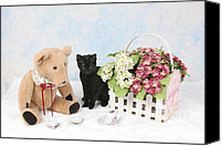 Kitten Greeting Card Digital Art Canvas Prints - Tea Time Canvas Print by Denise Oldridge