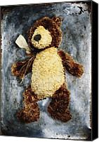 Skip Nall Canvas Prints - Teddy Bear Canvas Print by Skip Nall