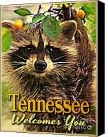 Raccoon Digital Art Canvas Prints - Tennessee Racoon Canvas Print by Vintage Poster Designs