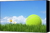 Tennis Canvas Prints - Tennis Ball Canvas Print by Andrew Dernie
