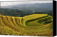 Mountain Scene Canvas Prints - Terraced Field In Longsheng Town, Guilin Canvas Print by Huang Xin