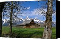 Old Trees Canvas Prints - Teton Barn Canvas Print by Douglas Barnett