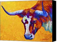 Ranching Canvas Prints - Texas Longhorn Cow Study Canvas Print by Marion Rose