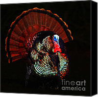 Thanksgiving Art Canvas Prints - Thanksgiving Turkey - Painterly - Square Canvas Print by Wingsdomain Art and Photography