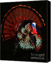 Thanksgiving Art Canvas Prints - Thanksgiving Turkey - Painterly Canvas Print by Wingsdomain Art and Photography