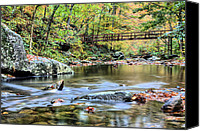 Otter Photo Canvas Prints - The Appalachian Trail Canvas Print by JC Findley