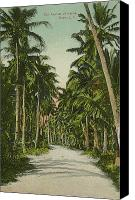 Guaham Canvas Prints - The Avenue of Palms Guam LI Canvas Print by eGuam Photo