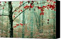 Vermont Autumn Foliage Canvas Prints - The Backup Singers Canvas Print by Katya Horner