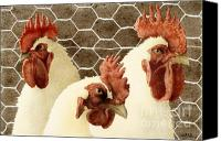 Chicken Canvas Prints - The Barnyard Bouncers... Canvas Print by Will Bullas