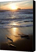 Olympic National Park Canvas Prints - The Beach At Sunset In Olympic National Canvas Print by Taylor S. Kennedy