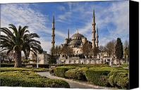 Tourist Attraction Canvas Prints - The Blue Mosque in Istanbul Turkey Canvas Print by David Smith