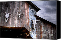 Cow Barn Canvas Prints - The broad side of a... Canvas Print by Pixel Perfect by Michael Moore