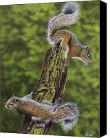 Squirrel Painting Canvas Prints - The Chase Canvas Print by Greg Halom