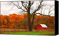 Indiana Autumn Canvas Prints - The Colors of Fall Canvas Print by Robin Pross