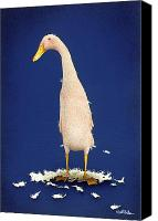 Change Painting Canvas Prints - The Deciduous Duck... Canvas Print by Will Bullas