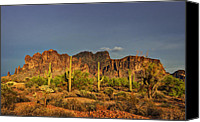 The Superstitions Canvas Prints - The Desert Aglow Canvas Print by Saija  Lehtonen