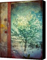 Photomanipulation Canvas Prints - The Door and the Tree Canvas Print by Tara Turner