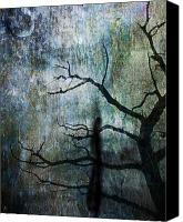 Dave Digital Art Canvas Prints - The Dreaming Tree Canvas Print by Ken Walker