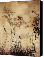 Fairies Drawings Canvas Prints - The Fairys Tightrope from Peter Pan in Kensington Gardens Canvas Print by Arthur Rackham