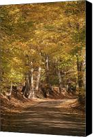 Fall Foliage Artwork Canvas Prints - The golden road Canvas Print by Robert Pearson