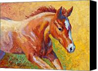 Foal Painting Canvas Prints - The Good Life Canvas Print by Marion Rose