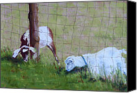 Goat Pastels Canvas Prints - The Grass Is Always Greener Canvas Print by Nancy Jolley