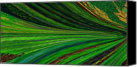 Signed Digital Art Canvas Prints - The Green Movement Canvas Print by Rita Nordal