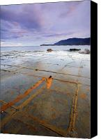 Grid Canvas Prints - The Grid Canvas Print by Mike  Dawson
